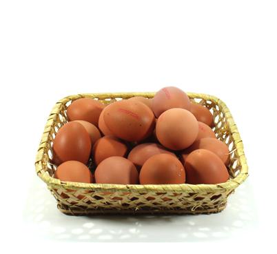 1/2 dotzena d'ous camperos