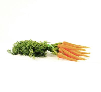 Manat de pastanagues